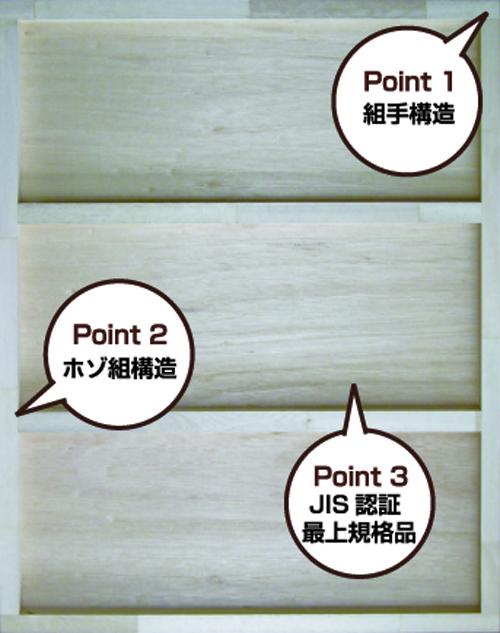 panel1
